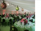 Corporate hospitality dinner marquee