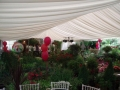 70th Birthday party for 60 guests