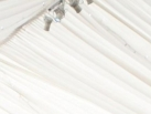 White pinspotlights