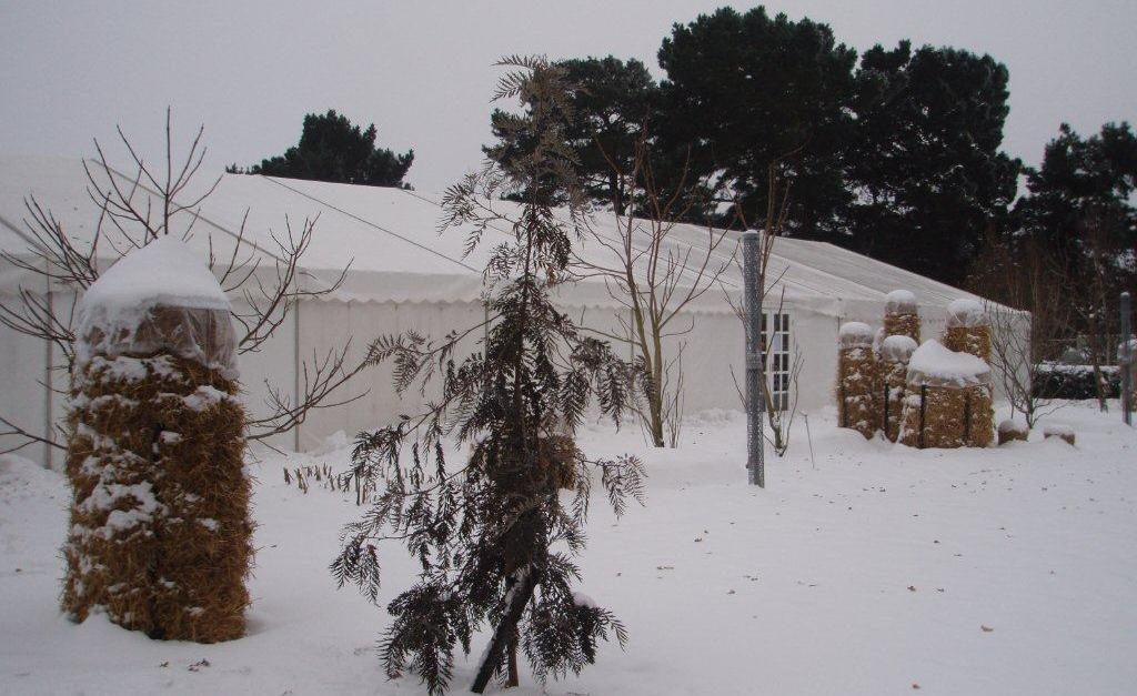 Marquee Hire Surrey, RHS Wisley